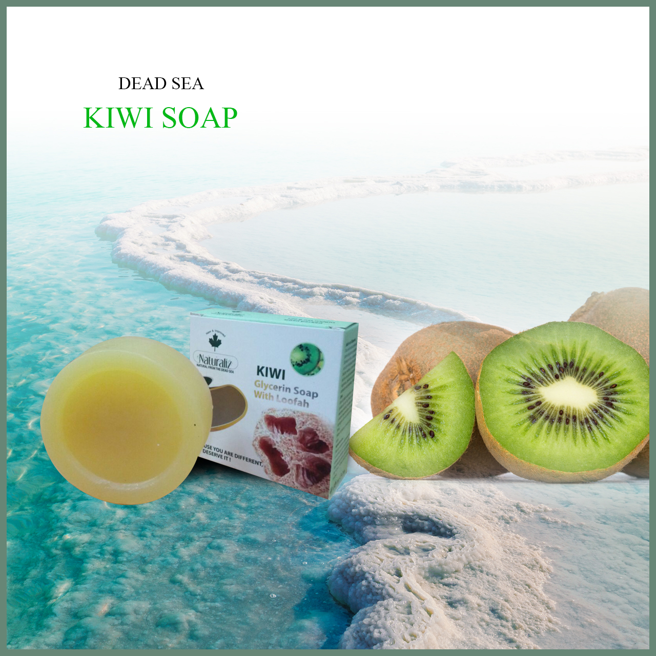 Glycerin Soap With Loofah-Kiwi